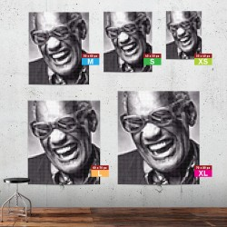 Ray Charles in-situ XS to XL