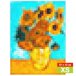 The sunflowers XS