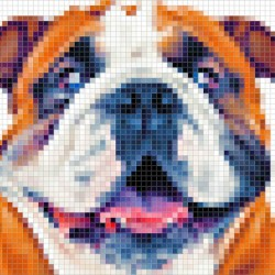 Pixitlab Artworks In Pixel Art On The Animals Theme