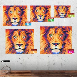 Lion in-situ XS to XL